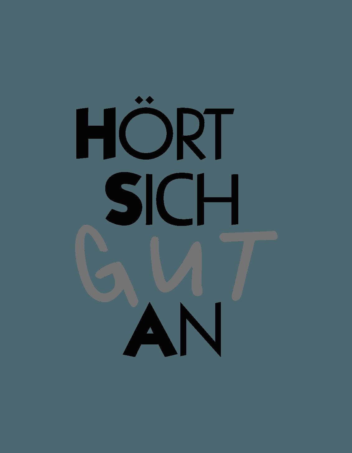 Gutschein - Plattenspieler Service Check